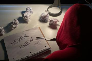 Versvs Cover Art Never Knew
